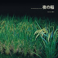 Reiko Kudo - Rice Field Silently Riping In The Night - LP